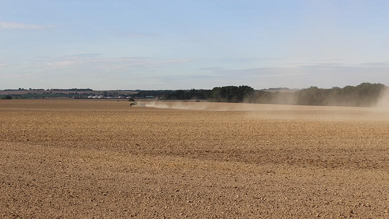 Dürre in der Landwirtschaft