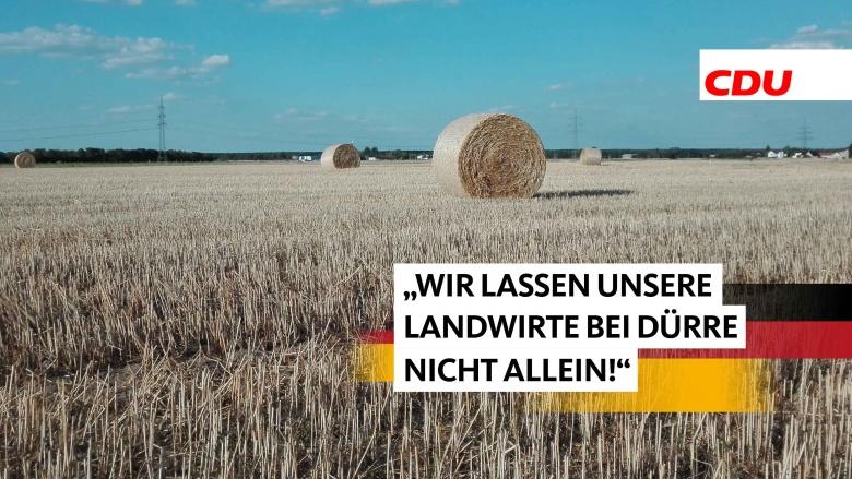 Dürre in Nordsachsen
