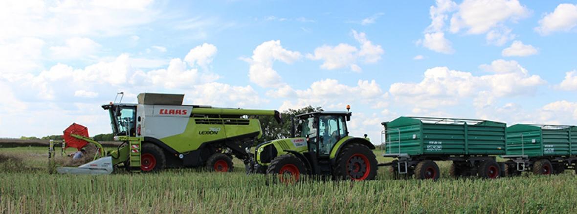 Nordsachsen ist geprägt von Landwirtschaft